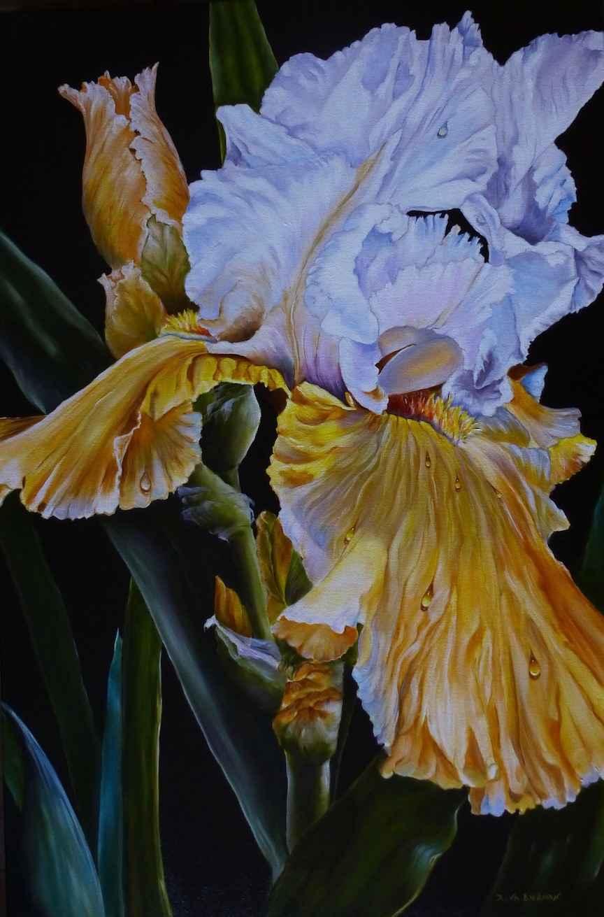 Lady Iris by  Rena Bierman - Masterpiece Online