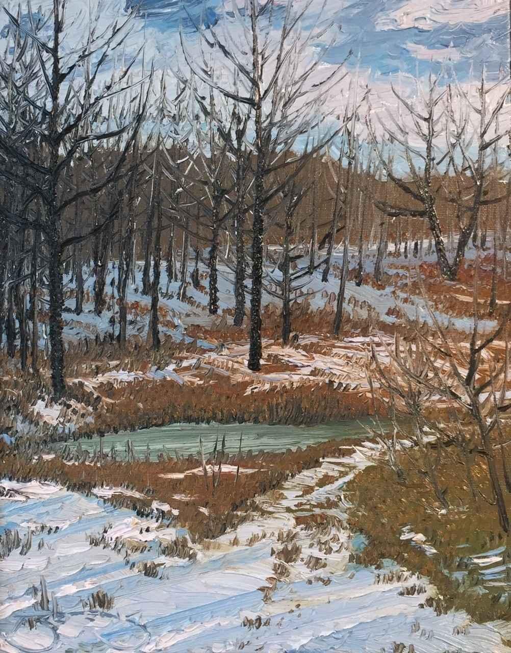 Frozen Pond by  Mark Berens - Masterpiece Online