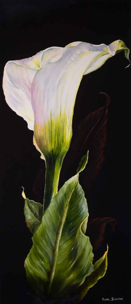 Solitary Loveliness by  Rena Bierman - Masterpiece Online