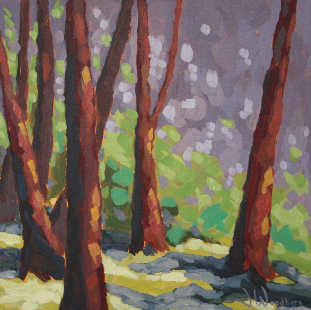Cedar Trunks by Ms Jennifer Woodburn - Masterpiece Online