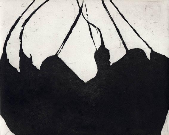 Dutchman's Pipe (APs ... by  Angela Hayson - Masterpiece Online
