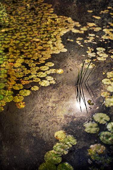 Surface Tension, 2010 by  Michael Stimola - Masterpiece Online