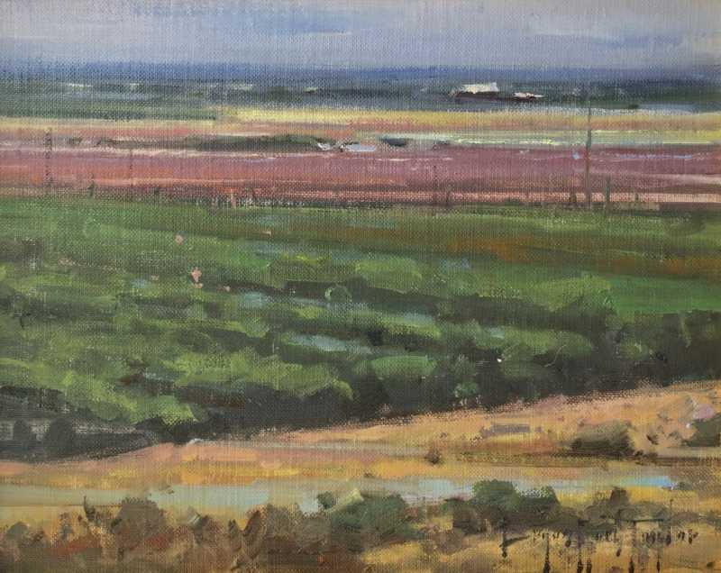 Central Valley Fields...
