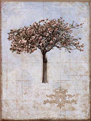 Cherry Tree by  David Smith-Harrison - Masterpiece Online
