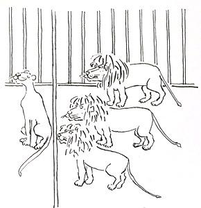 Three Lions Glaring A...  by  Bernard Waber