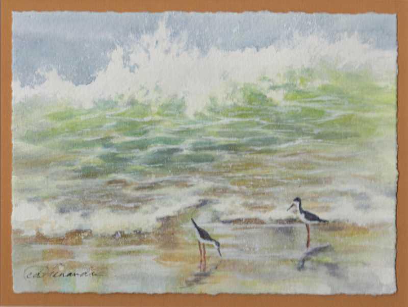 Ae'o Shorebreak by  Candace Fenander - Masterpiece Online