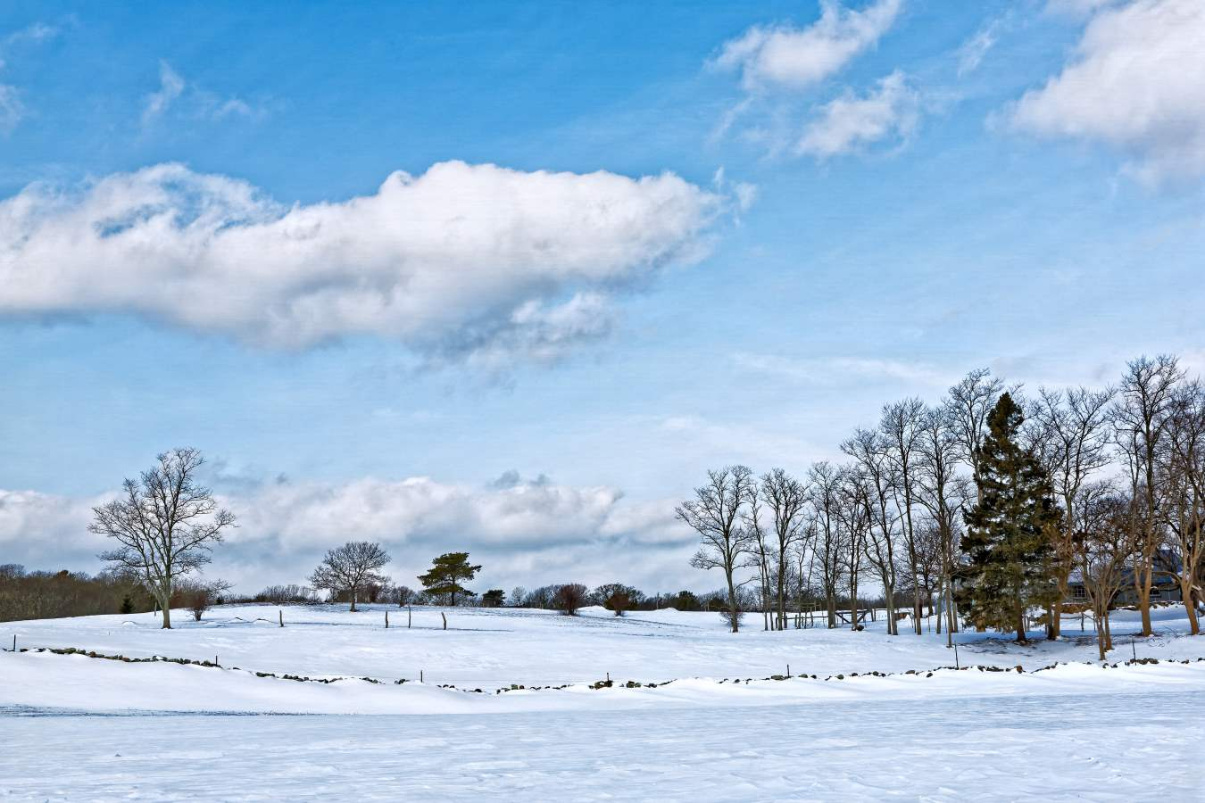 Winter in Blue and Wh... by  Michael Stimola - Masterpiece Online