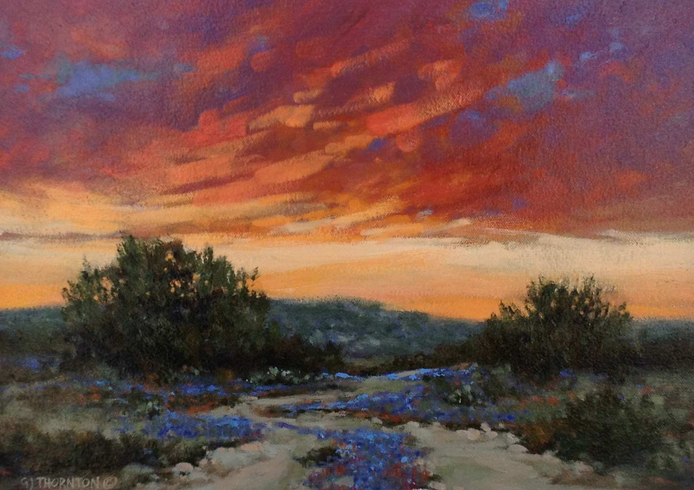 Wildflower Sundown by Mr Gary Jack Thornton - Masterpiece Online