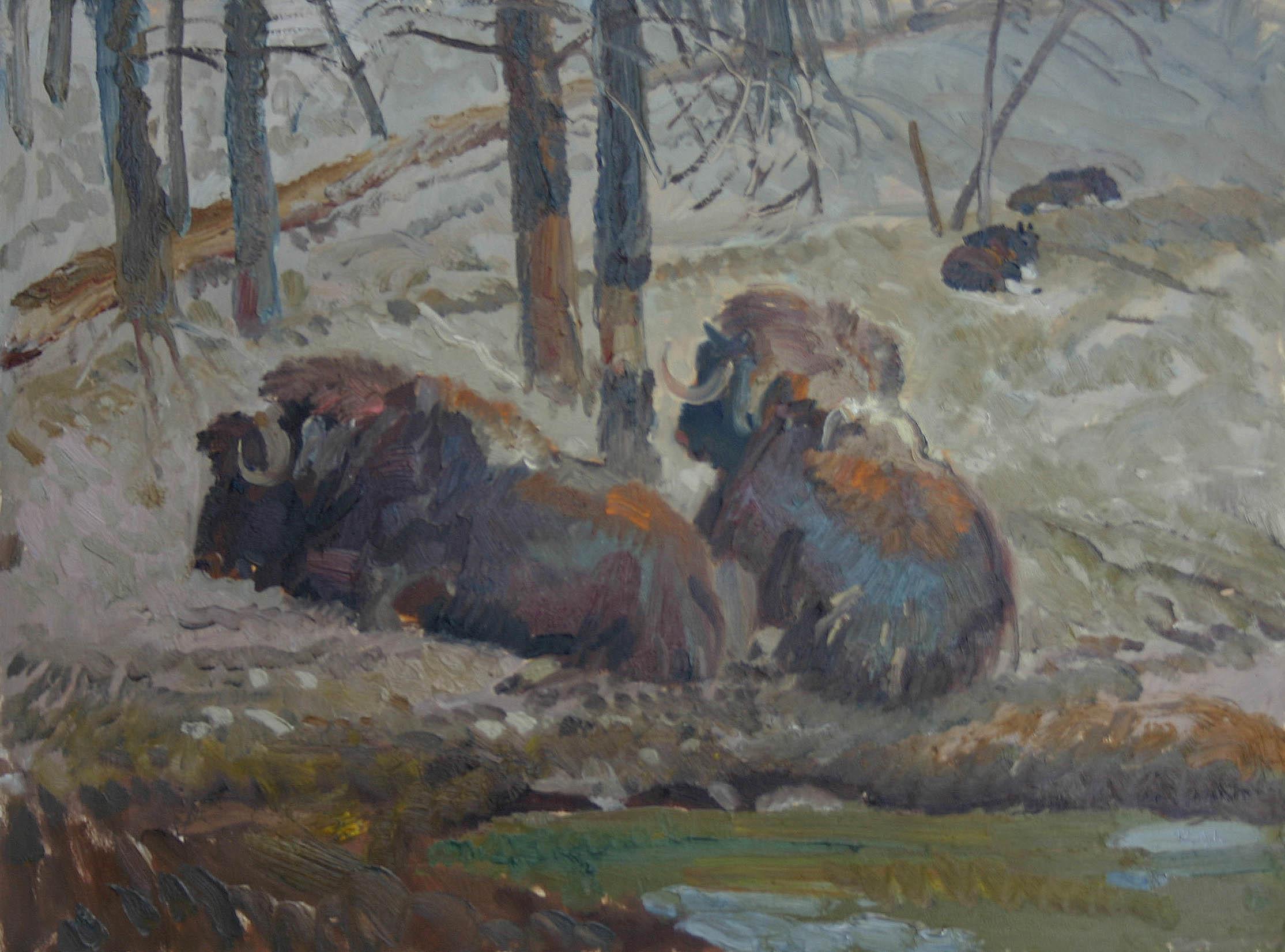 Musk Oxen by  Robert Lougheed - Masterpiece Online