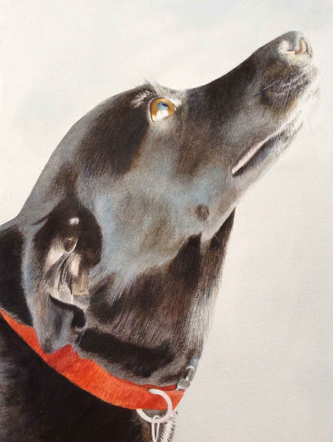 Millie by  Sherry Matlack - Masterpiece Online