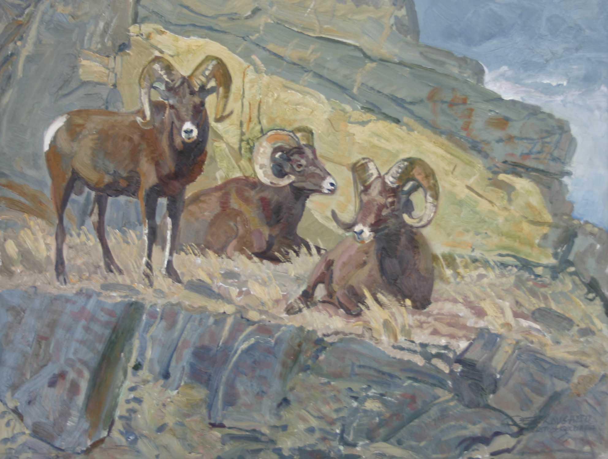 Stone Sheep in Rocks by  Robert Lougheed - Masterpiece Online