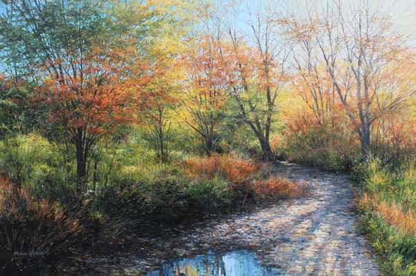 Puddle in the Path  by  Michael Wheeler