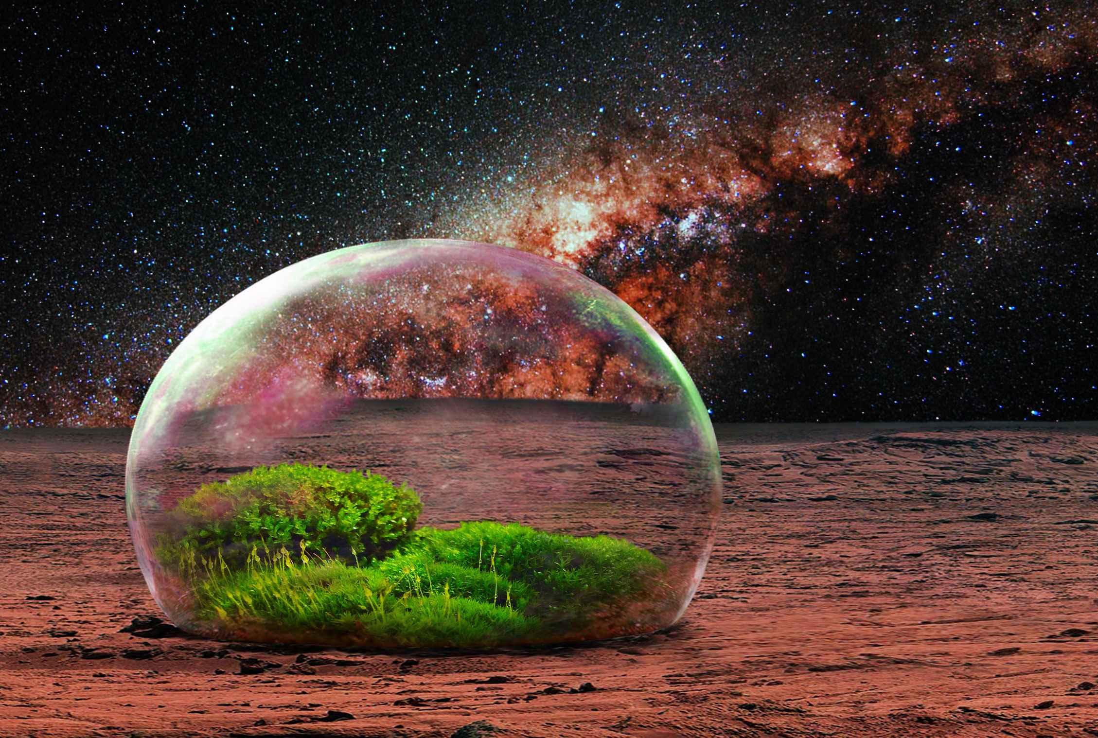 Image result for terraforming