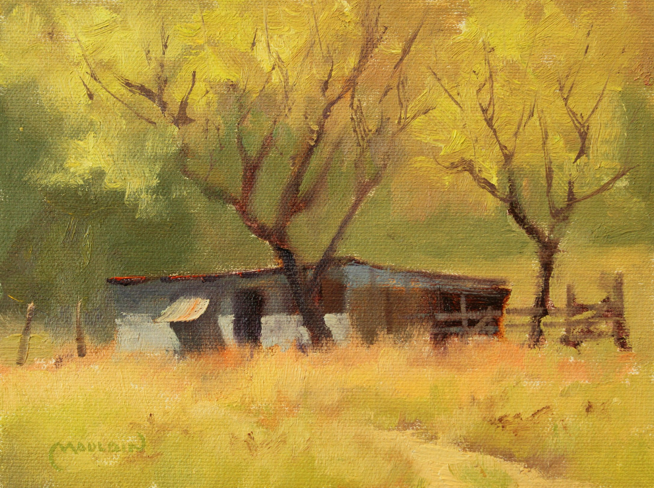 Live Oak Shed by  Chuck Mauldin - Masterpiece Online