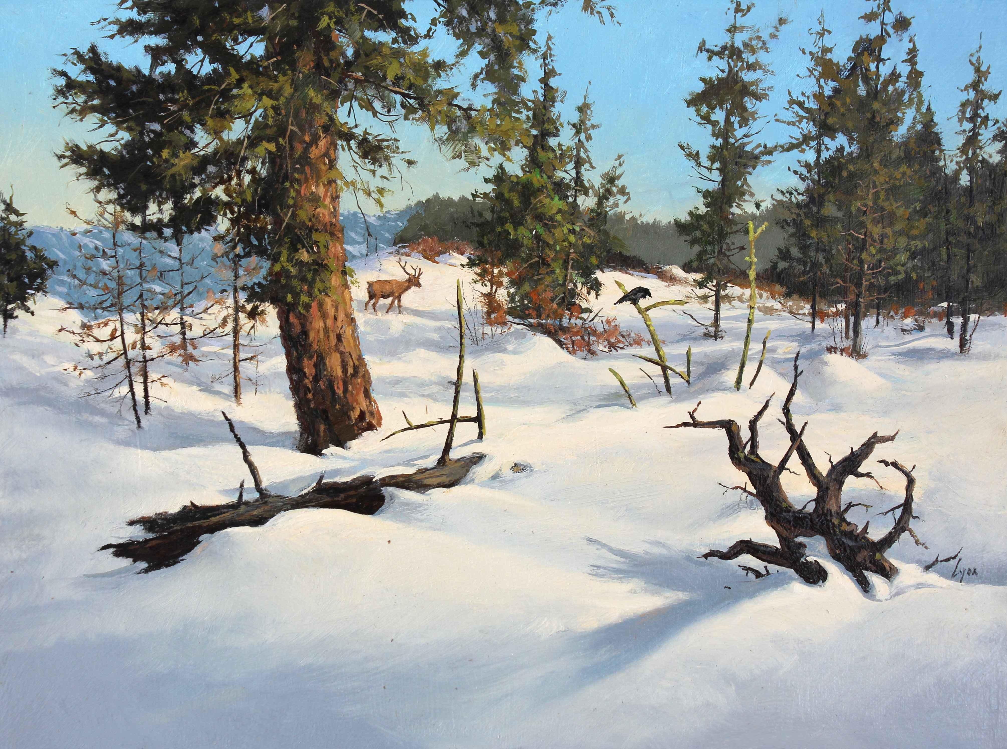 Winter Sun  by  Harold Lyon