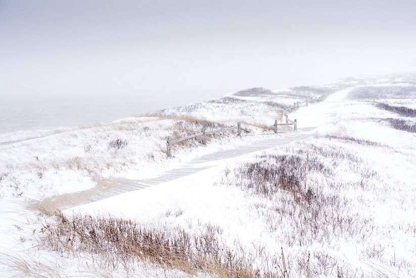 Aquinnah Highlands 20... by  Alison Shaw - Masterpiece Online