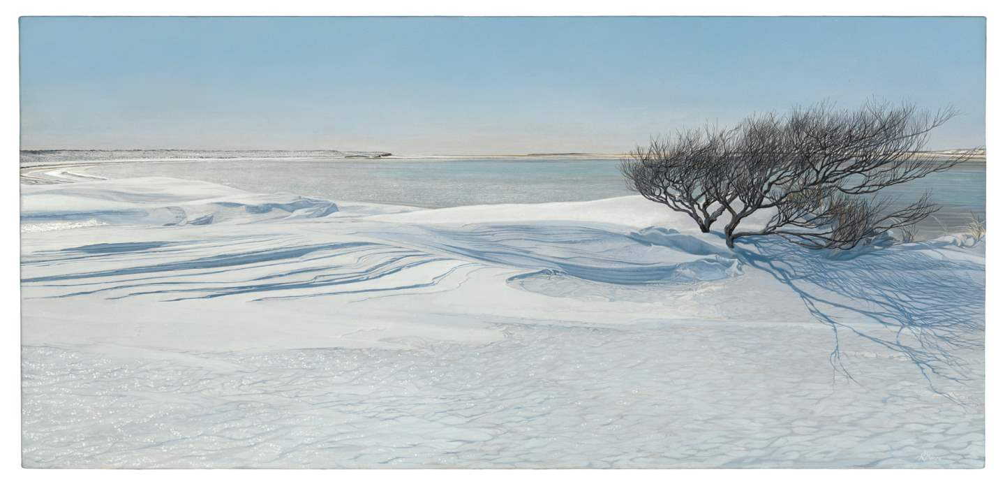 Snowdrift by  Andrew Moore - Masterpiece Online