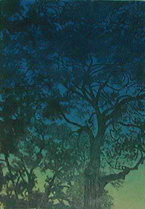 Twilight Treescape  by  Susan Baehmann