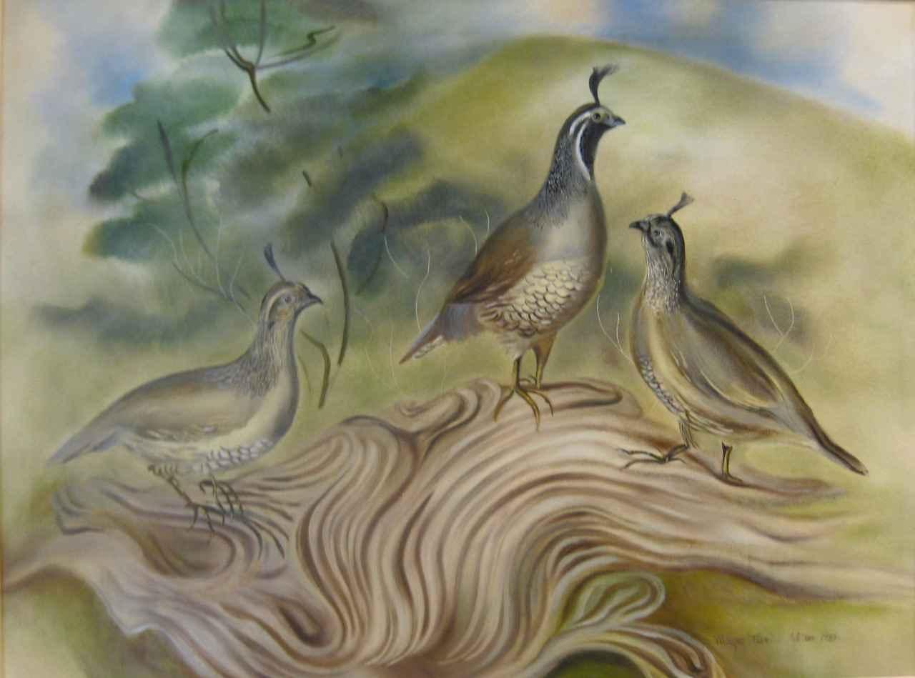 Quails at Pohakuloa by  Margaret Fleming Waldron (1910-1992) - Masterpiece Online