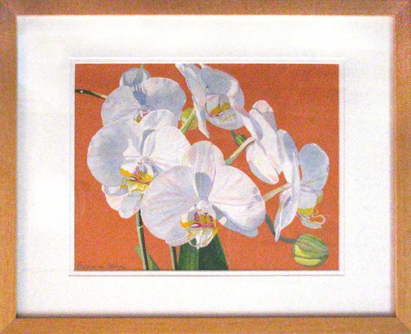 Orchids, orange backg... by  Fabienne Blanc - Masterpiece Online