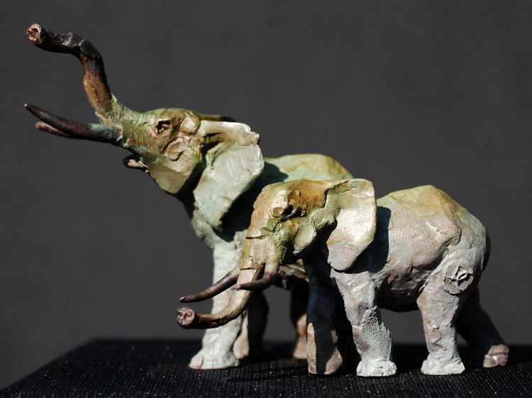 Elephants  by  Dan Chen