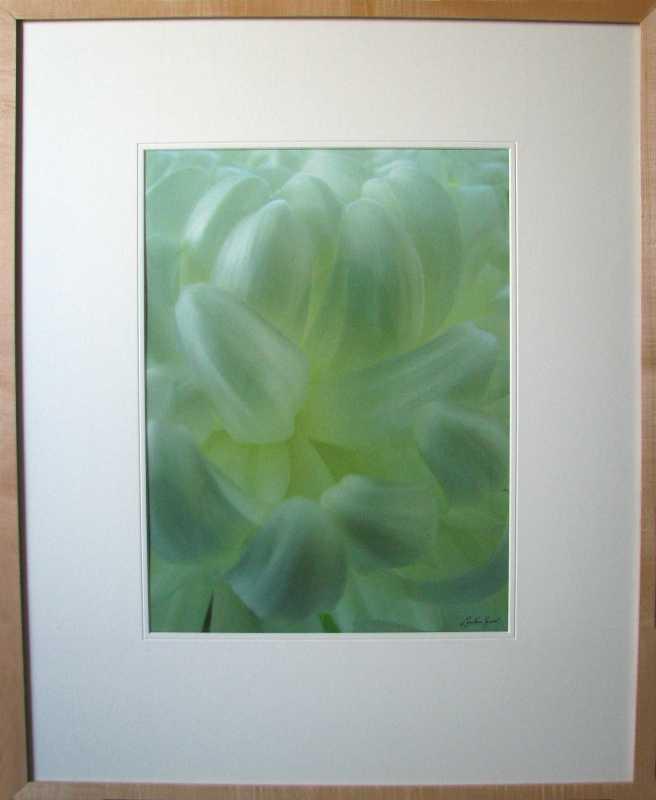 Chrysanthemum by  Lani Yamasaki - Masterpiece Online