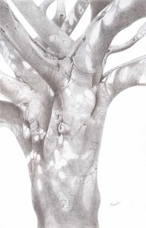 Root to Heaven by  Susan Henkels - Masterpiece Online
