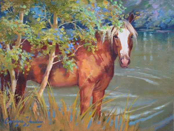 Sunny in the Shade  by  Carolyne Hawley