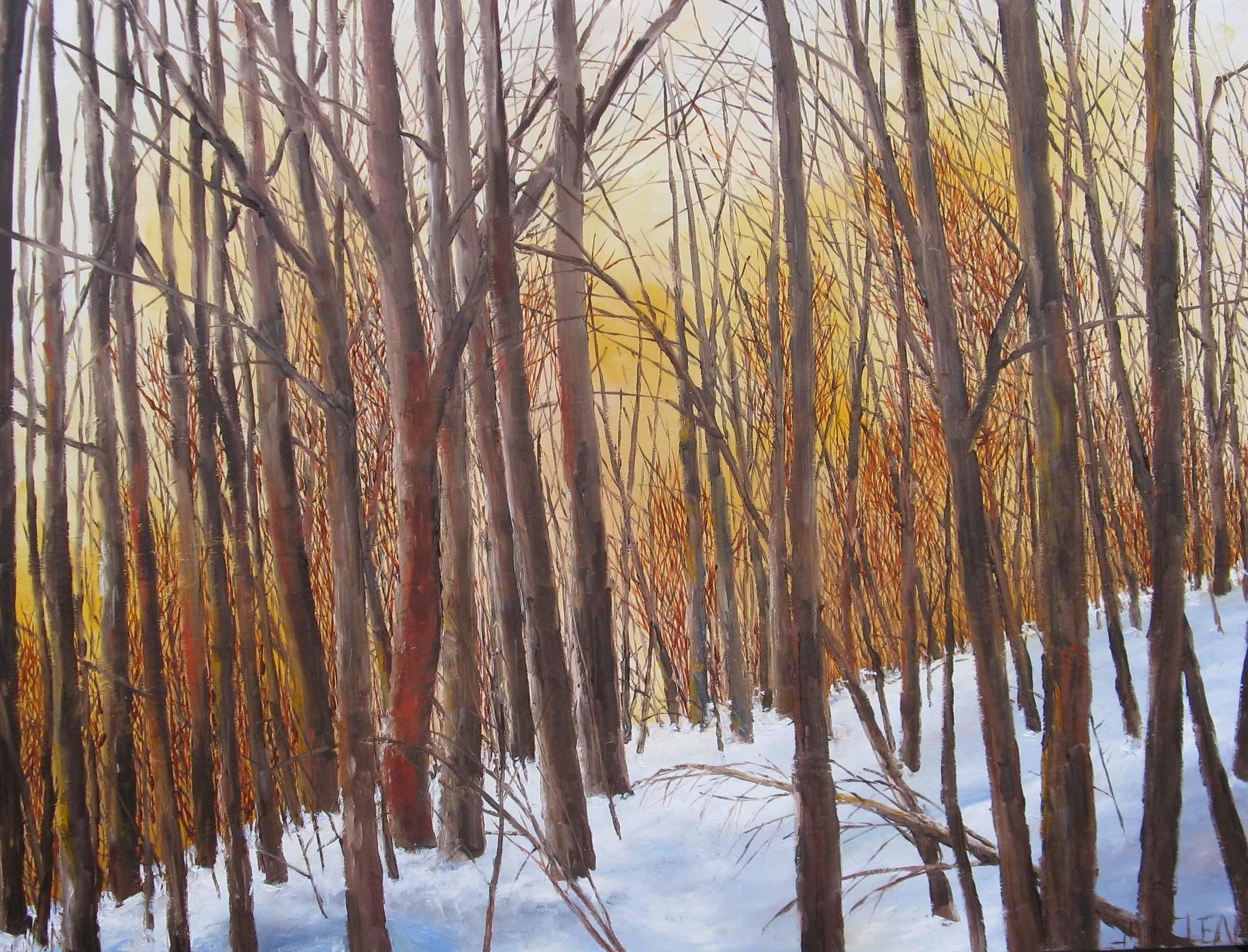 Winter Sunset by  Jamie MacLean - Masterpiece Online
