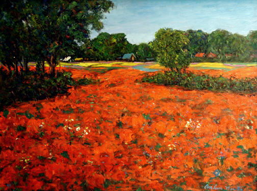 Field of Red Poppies by  Andres  Morillo - Masterpiece Online