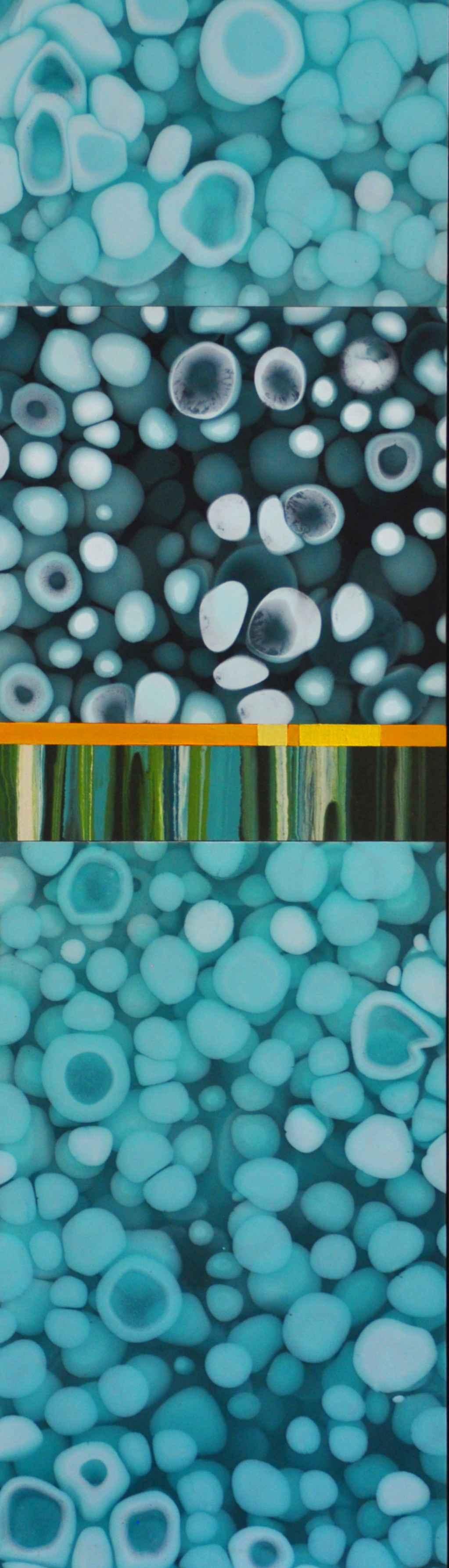 Small Slice #8 (Swimm... by  Susie White - Masterpiece Online