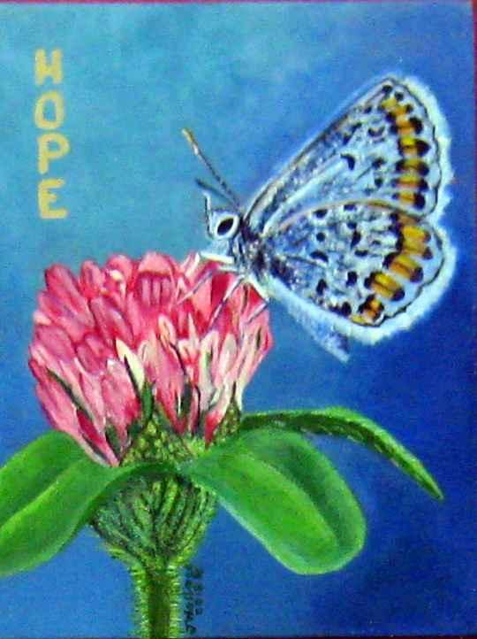 Butterfly's Hope by Mrs Joy Wallace - Masterpiece Online