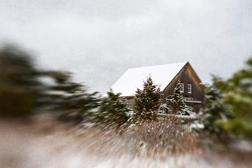 Winter Barn, 2009 by  Michael Stimola - Masterpiece Online
