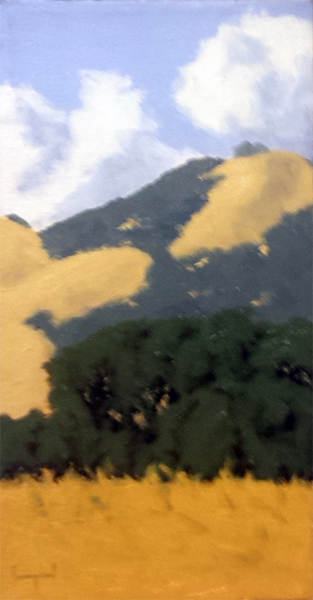 Carmel Valley Hilltop... by  Donald  Craghead - Masterpiece Online