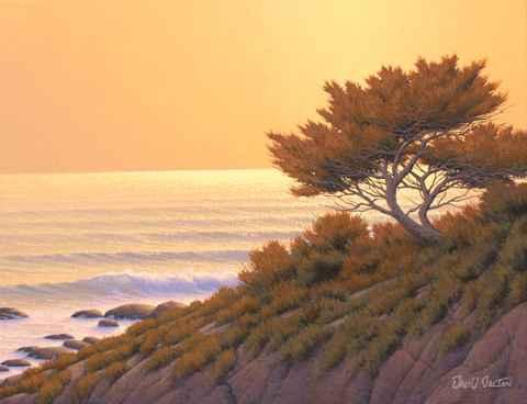 Cypress at Sundown by  David  Dalton  - Masterpiece Online