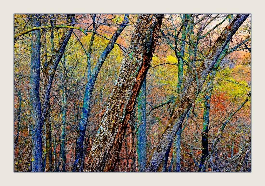 Landscape 86117 by  Steven Agard - Masterpiece Online
