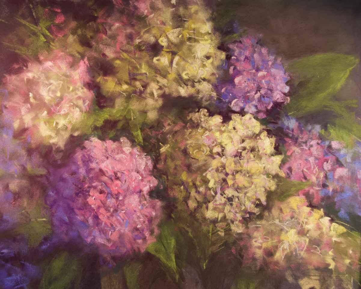 Garden Hydrangeas by  Amanda Houston - Masterpiece Online