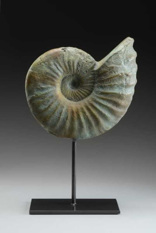 Nautilus 4/50 by Mr Giuseppe Palumbo - Masterpiece Online