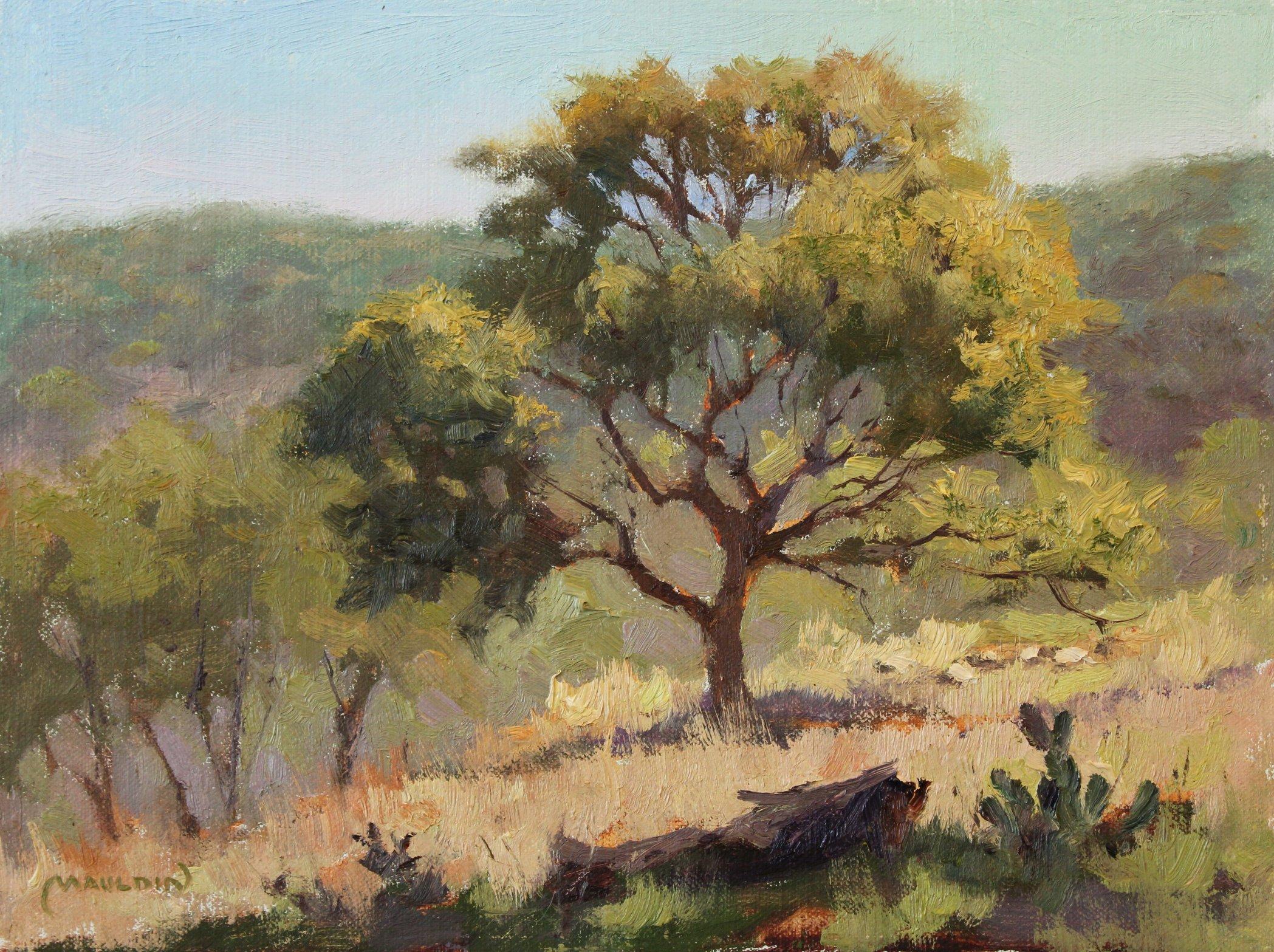 Hillside Oak by  Chuck Mauldin - Masterpiece Online
