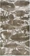 Water-lilies (1st Sta... by  Angela Hayson - Masterpiece Online