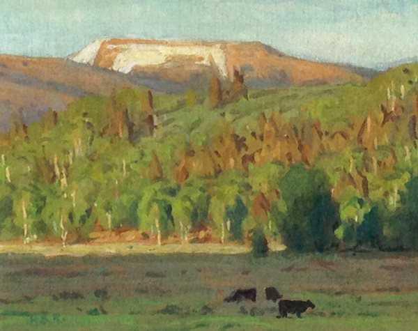 Salt Creek Cattle