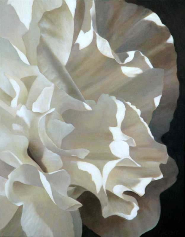 Carnation 8 by  Laurie Koss - Masterpiece Online