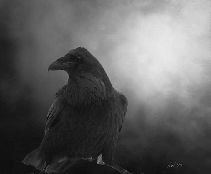 Raven Raven Mischief