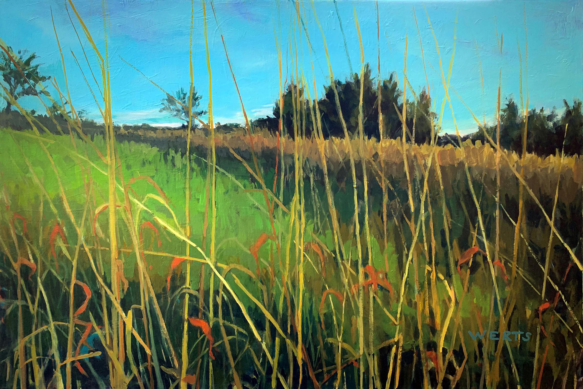 Grass Dance #1 by  Diana Werts - Masterpiece Online