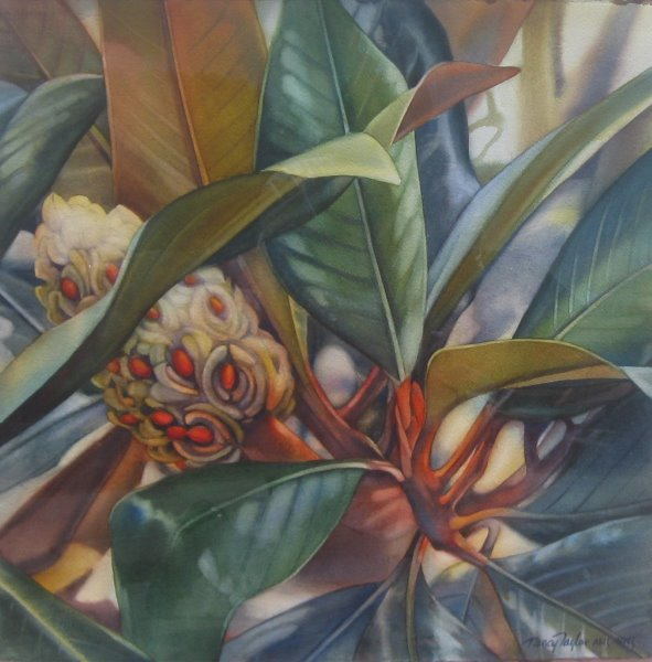 Fall Magnolia by  Nancy Taylor - Masterpiece Online