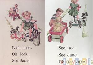 Look, Look, See Jane  by  Odille Ousley