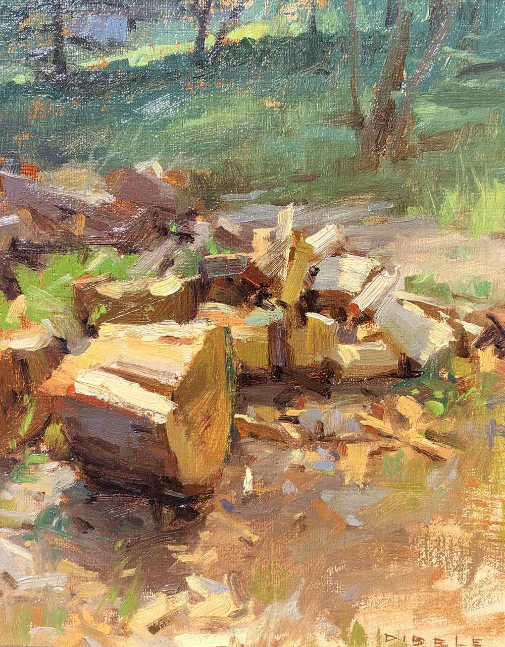 Springdell Wood Pile  by  David Dibble