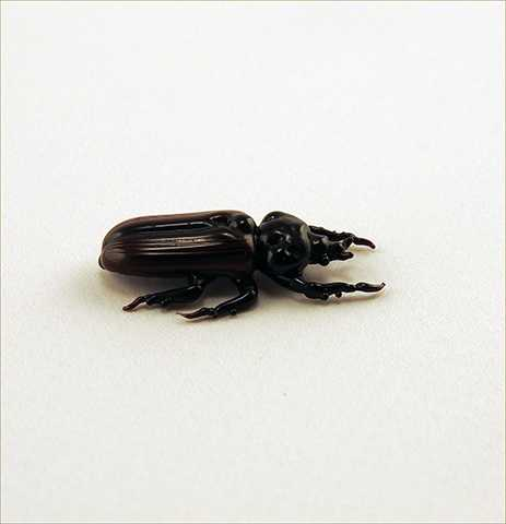 Rain Beetle by  Michael Mangiafico - Masterpiece Online