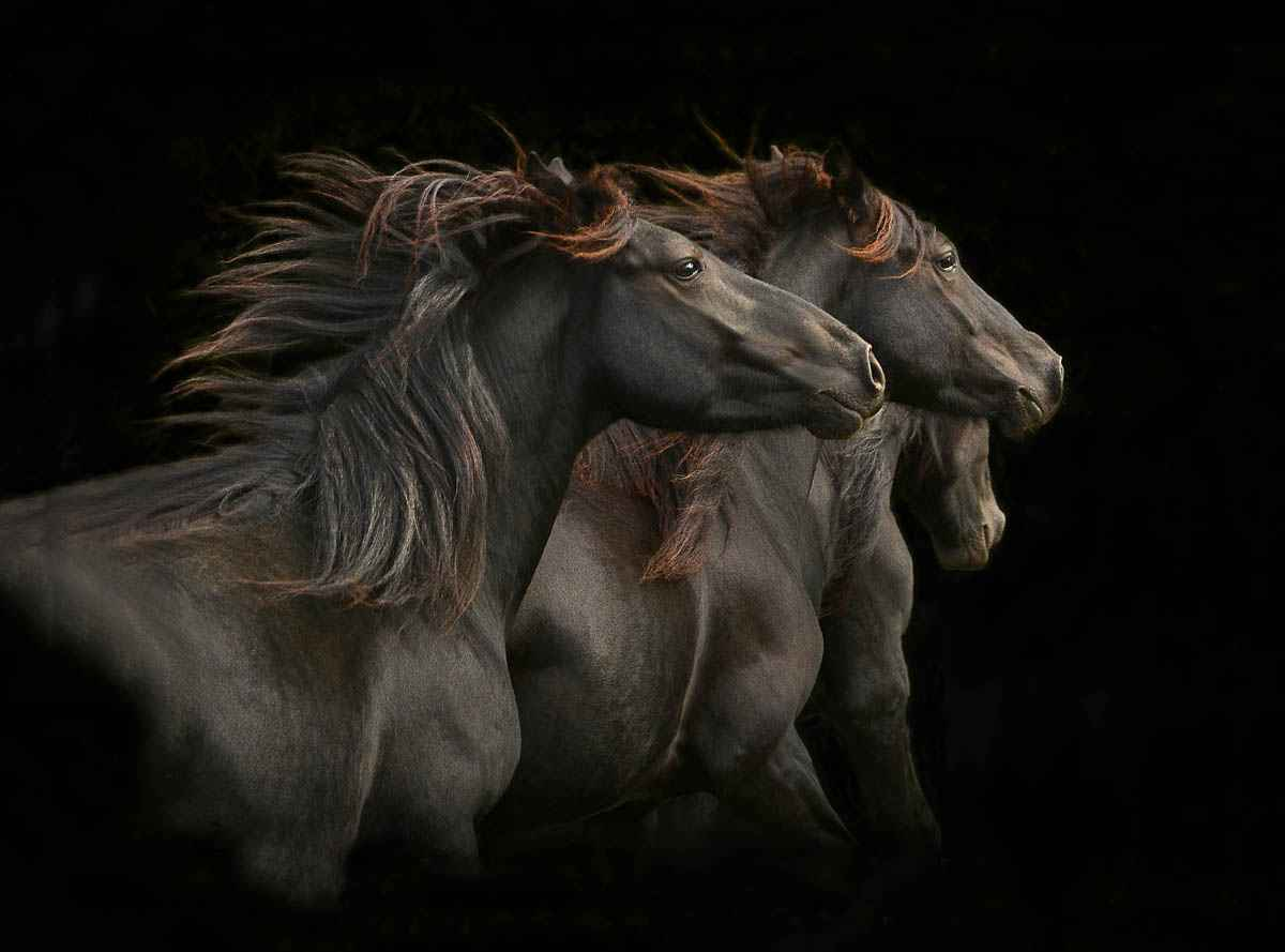 Three Brothers by  Tony Stromberg - Masterpiece Online