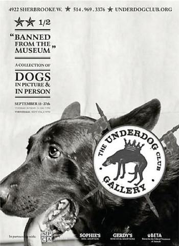 Underdog #1/ Elliot -... by  Fern Breslaw - Masterpiece Online